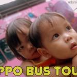 Hippo Bus Tour