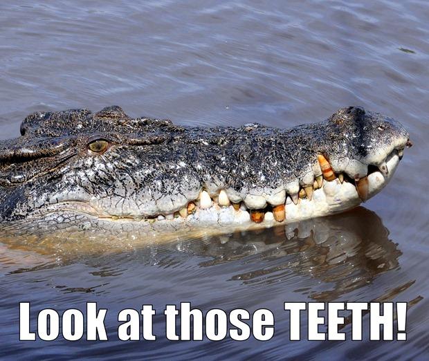 crocs teeth