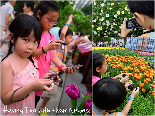 nikon feature thumb Tulips at Gardens by the Bay