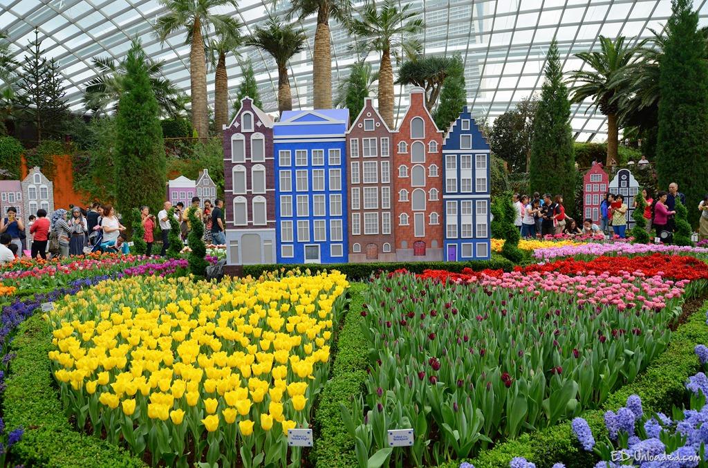 tulip gardens - Garden By The Bay Flower Festival