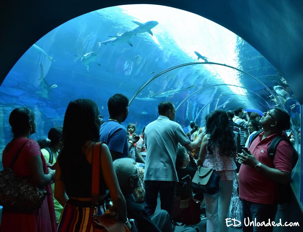 Aquarium Sentosa